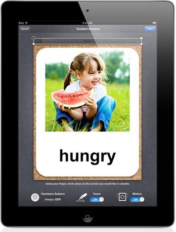iPad GA Options