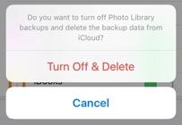 Delete iCloud Backup Data