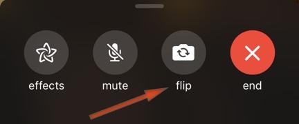 Flip Camera in FaceTime